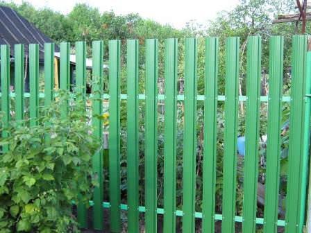 Забор из металлического штакетника — надежность и прочность ограждения