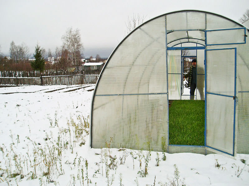 Зимняя теплица своими руками: выбираем тип, строим и обустраиваем изнутри