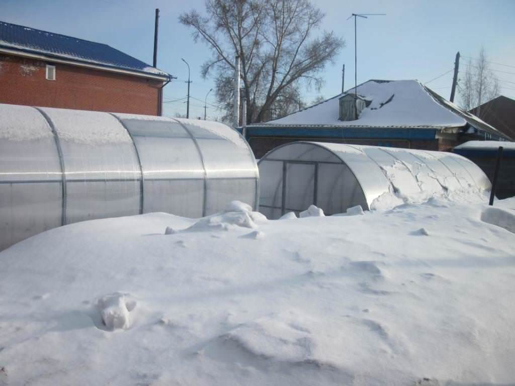 Правильно определяем место размещения зимней теплицы на дачной территории