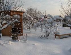 Дачный сезон начинается с февраля