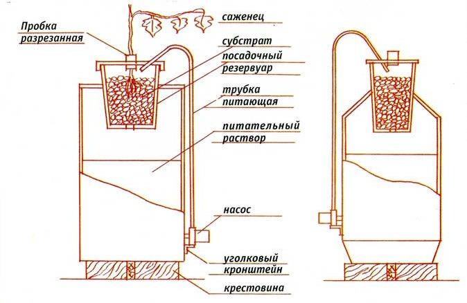 Стандартная гидропонная установка для выращивания овощных культурсостоит из двух основных частей