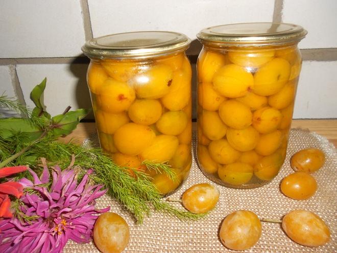 Сливы консервированные на зиму рецепты вкусных, с помидорами, в сиропе, без стерилизации,