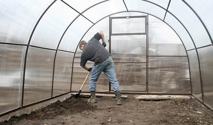 Главным условием соблюдения правил высаживания рассадного материала или посева семян весной является правильно осуществляемая подготовка гряд защищенного грунта