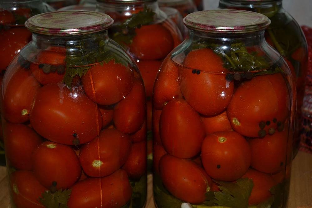 Помидоры с базиликом консервированные на зиму, можно ли класть для огурцов, что добавлять в рецепт