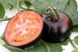 Томаты Черный принц известны многим огородникам