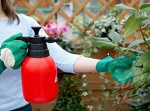 Бордоская жидкость является одним из наиболее популярных фунгицидов