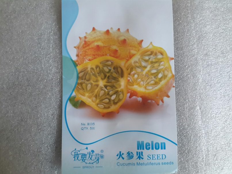 Как выращивать кивано (Тверская обл.)