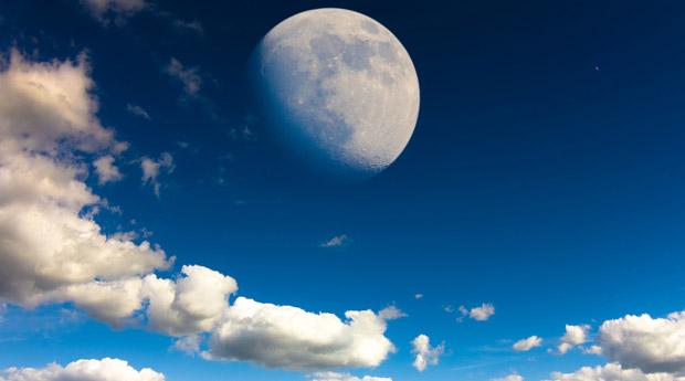 Сроки посадки арбуза по лунному календарю 2018