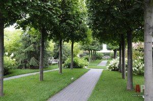 Мемориальный сад Авраама Линкольна: почувствуй красоту природного ландшафта