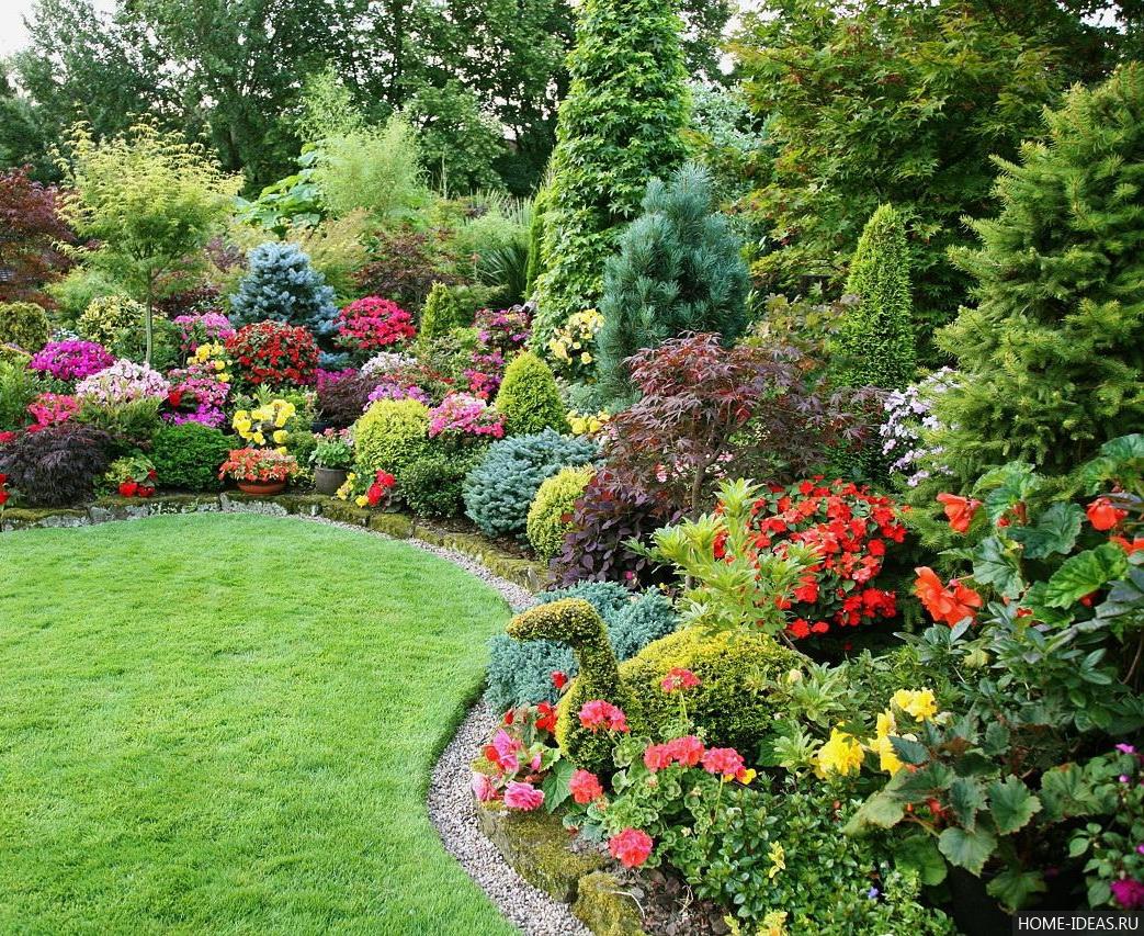Кустарники-многолетники для сада и дачи: названия с фото
