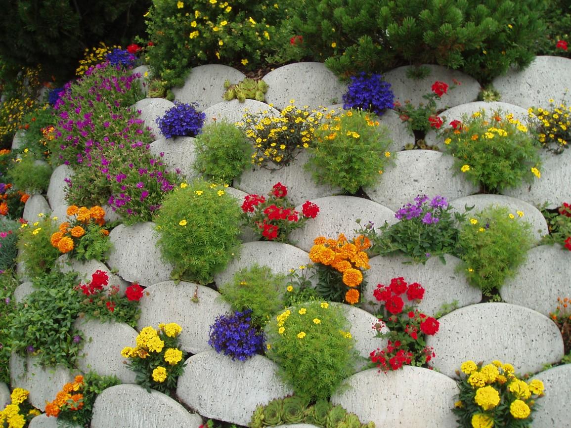 Название для букета осенних цветов на украинском языке — img 2