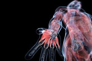 Тест: Вы знаете свое тело?