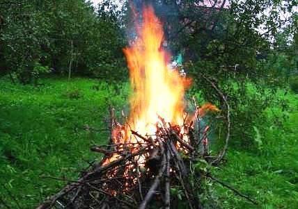 Кора с деревьев сжигается вместе с остальным садовым мусором