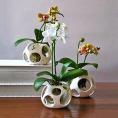 Кашпо для орхидей своими руками
