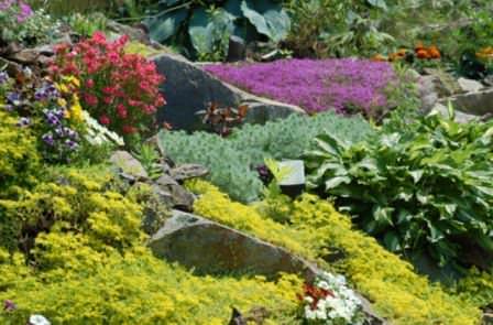 Красивая альпийская горка из цветов