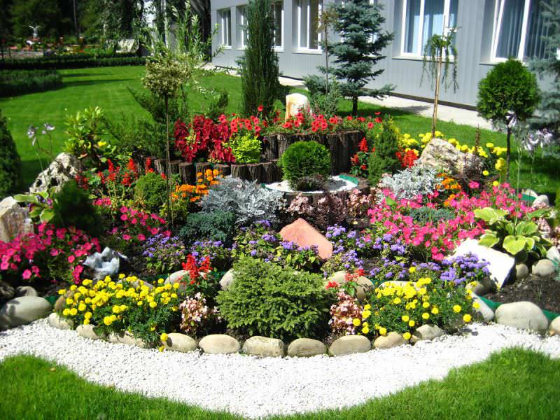 В первую очередь мы бы советовали обратить внимание на низкорослые, более декоративные и неприхотливые растения, которые будут смотреться идеально в любом сочетании и не испортят вид горки в тот момент, когда отцветут