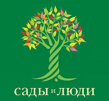 Виноград Сувенир: описание сорта, фото, отзывы