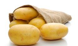 Сорт картофеля Наташа: характеристика и отзывы
