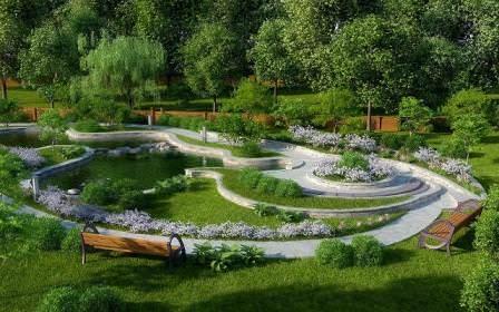 Как использовать березу в ландшафтном дизайне
