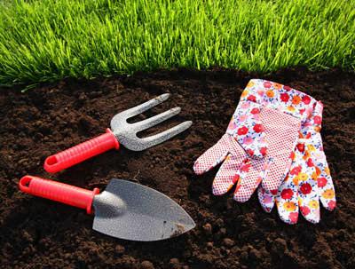 Технология самостоятельной посадки газона весной