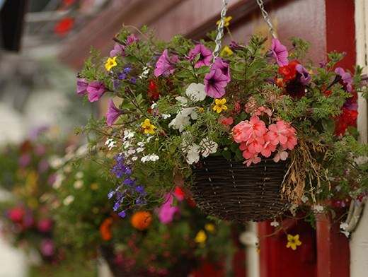 Уличные подвесные кашпо для цветов: характеристика видов и особенности изготовления своими руками