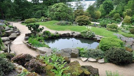 Демонстрационные сады: ландшафтные стили и объекты от питомников