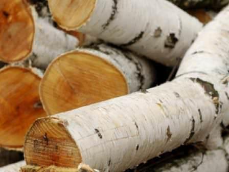 Дуб, береза и яблоня — неплохой вариант дров для приготовления мяса на огне