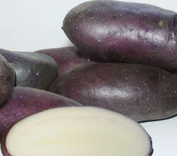 Картошка Черный принц с фиолетовой кожурой