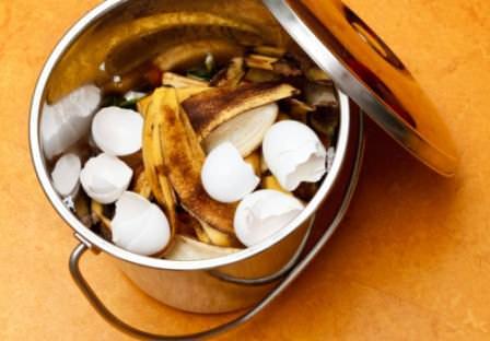 Из каких продуктов и компонентов наиболее правильно готовить компост?