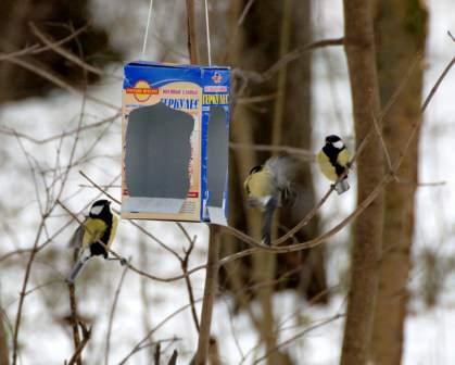 Кормушка для птиц из картона или коробки - простейший вариант