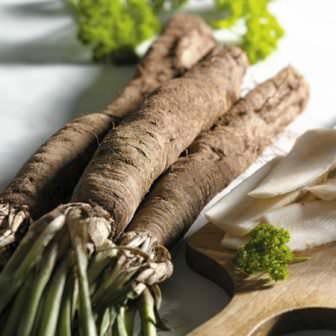 Скорцонера (известна также как черный или сладкий корень) – растение может приобрести очень приятный вкус, если его при этом правильно приготовить
