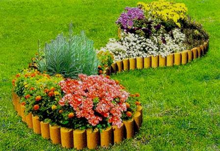 Какие растения наиболее подходят для