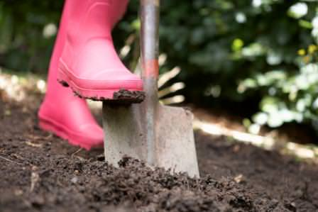 Как правильно копать землю