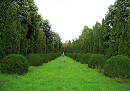 Садовые алеи