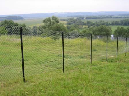 Большой забор из сетки рабицы