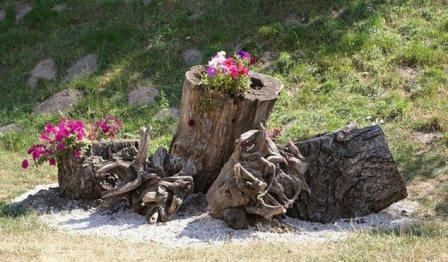 Рутарий в ландшафтном дизайне - как сделать сад
