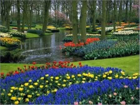 Доступность садов