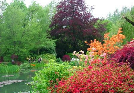 Игра красок водного сада