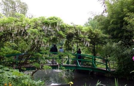Буйство зелени сада