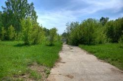 Преимущества бетонного покрытия для садовых дорожек