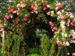 Романтический стиль сада