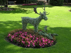 Садовые зеленые скульптуры