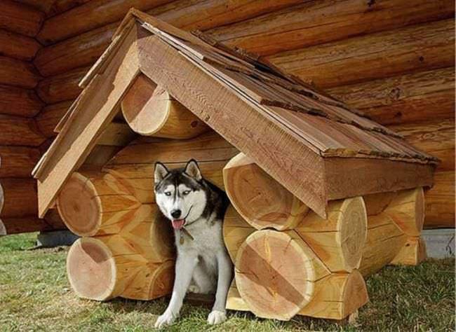 Строим своими руками деревянную будку для собаки, используя бревно