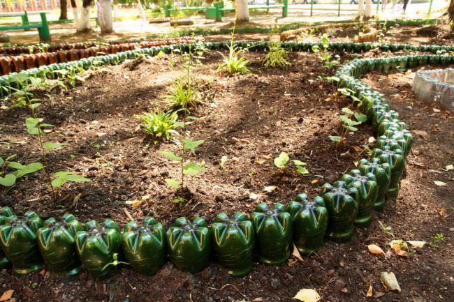 Разделение территории сада или огорода при помощи пустых стеклянных бутылок