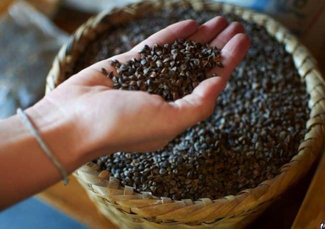 В составе гречихи большое количество витаминов и микроэлементов, именно этим объясняется ее польза как низкокалорийного продукта