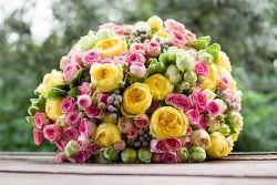 Пионовидные розы название