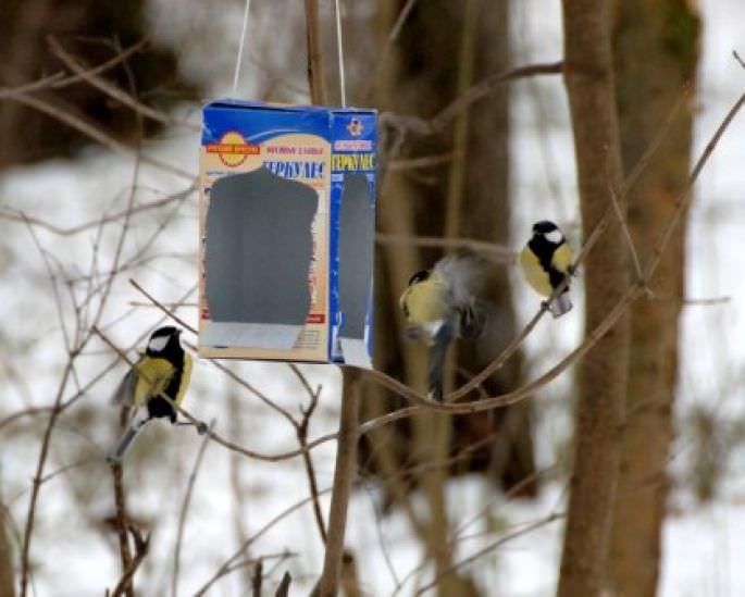 Кормушка для птиц из картона или коробки — простейший вариант