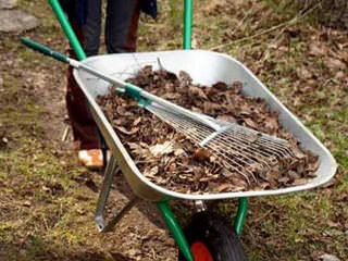 С чего начинать уборку в саду весной