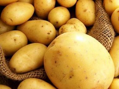 Вывоза большой партии картофеля