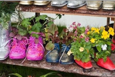 Продолжаем высаживать декоративные растения в старой обуви